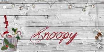 Snoopy - Loto de l'Avent 2013 Case-110