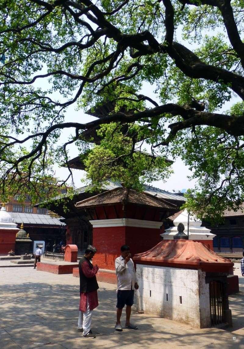 Souvenirs de Patan Bouddh21