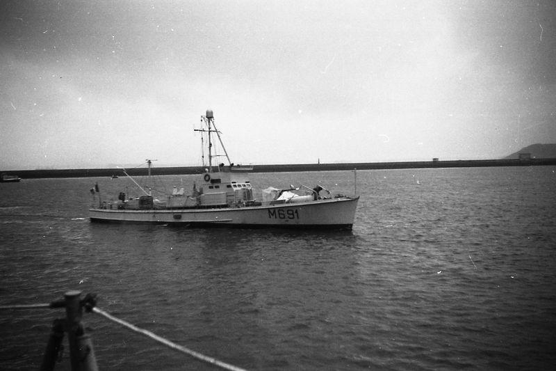 TULIPE (DC) M69114
