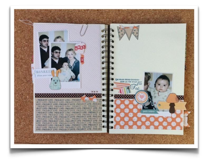 Mon family Diary n° 1  par F-Rose [Fini] Fd1011