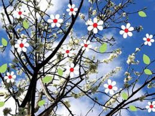 printemps Printe28