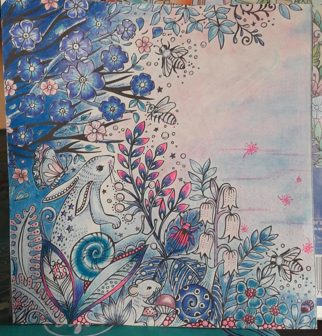 Mission de Didine (transmis par Tartecitron) rose et bleu 20190320