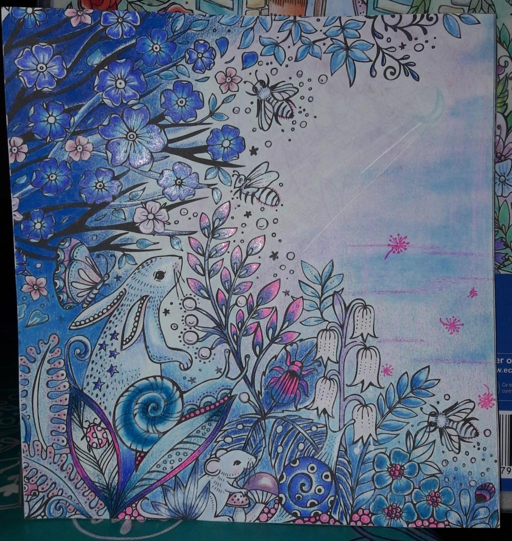 Mission de Didine (transmis par Tartecitron) rose et bleu 20190321