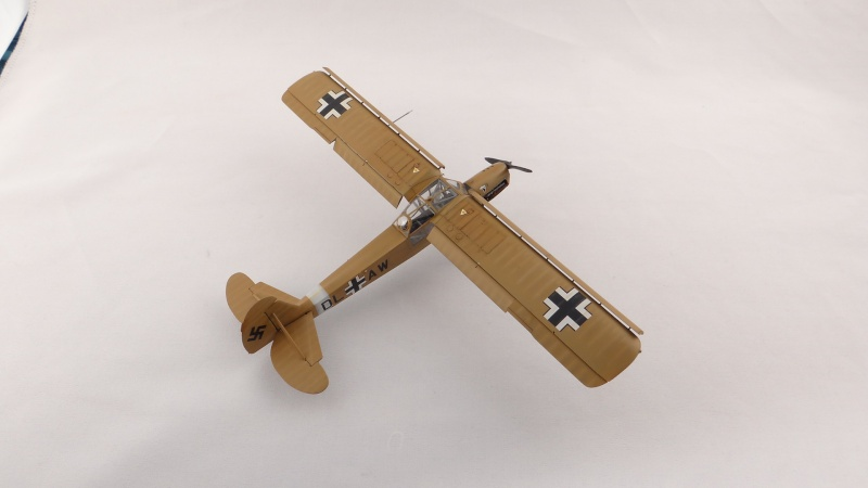 Fieseler Fi 156 Storch [ TAMIYA 1/48° ]  (Terminé). Dsc04512