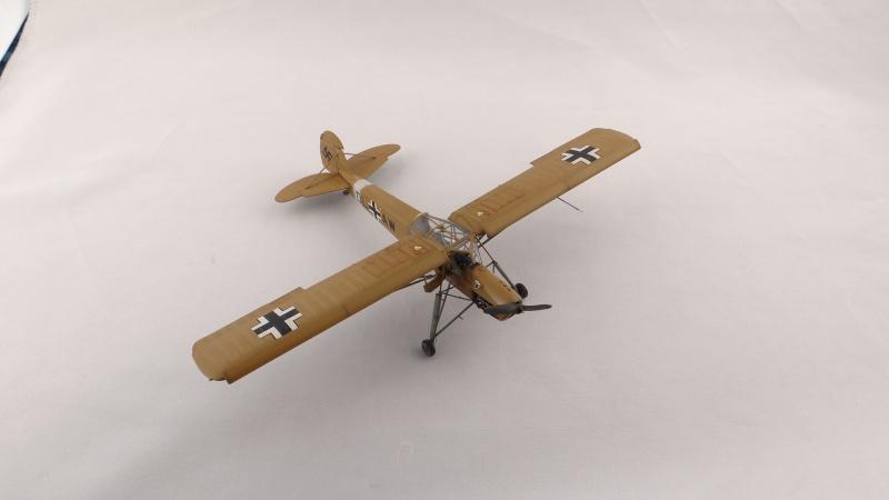 Fieseler Fi 156 Storch [ TAMIYA 1/48° ]  (Terminé). Dsc04513