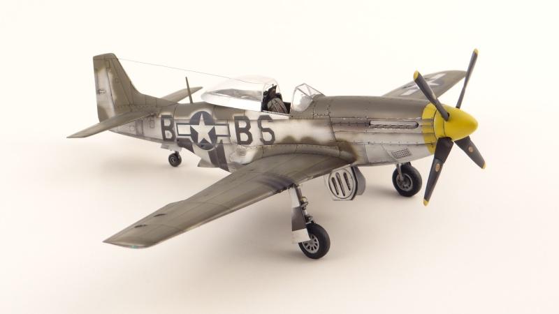 NORTH AMERICAN P-51 D [ TAMIYA ] avec marquage spécial pour un ami! ( fini) Dsc04735