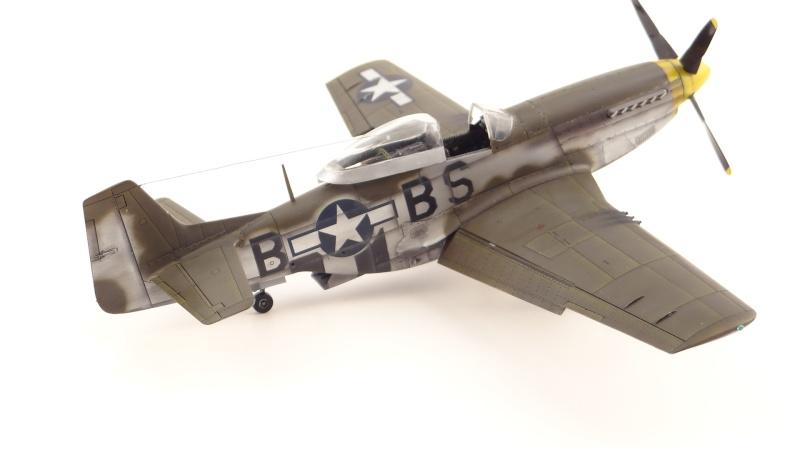 NORTH AMERICAN P-51 D [ TAMIYA ] avec marquage spécial pour un ami! ( fini) Dsc04736