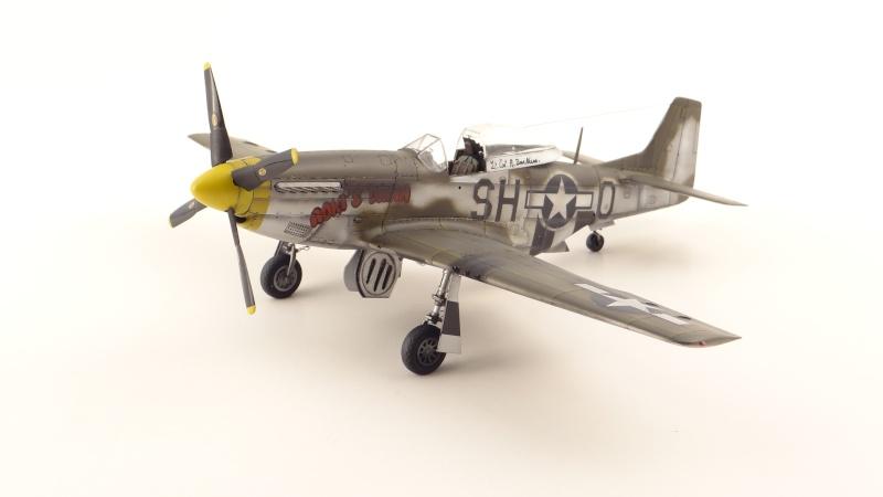 NORTH AMERICAN P-51 D [ TAMIYA ] avec marquage spécial pour un ami! ( fini) Dsc04737