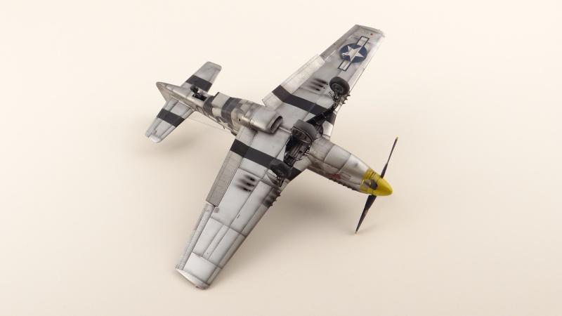 NORTH AMERICAN P-51 D [ TAMIYA ] avec marquage spécial pour un ami! ( fini) Dsc04738