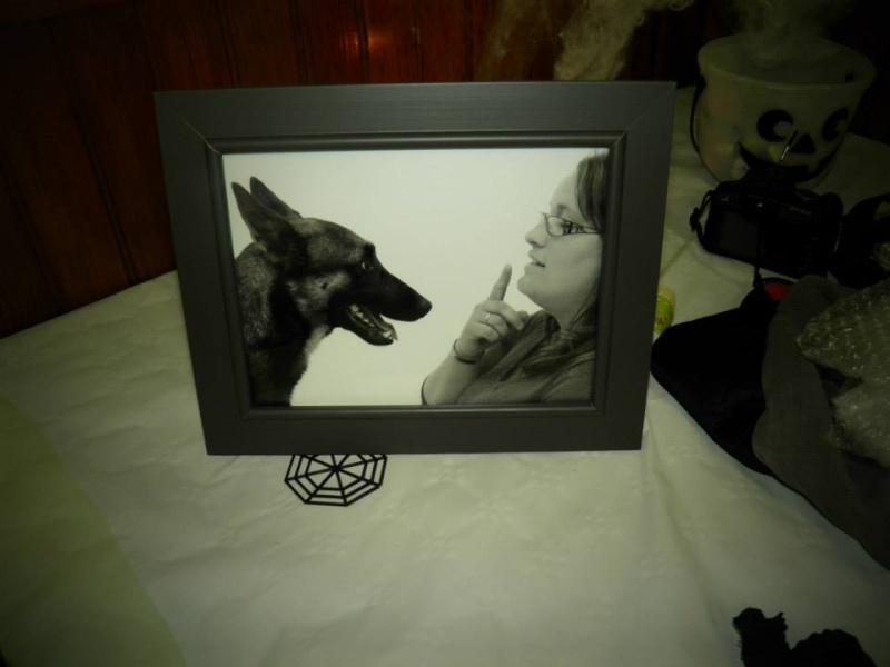 séance photo de ma chienne par un photographe pro, suis-je folle? - Page 4 13940111