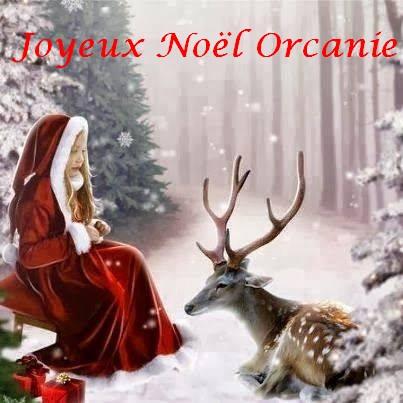 Noël 2013  14868310