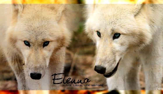 Entre le vie et la mort [Elenna] Signa_10