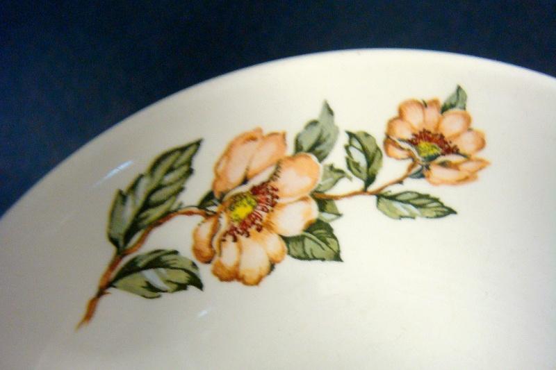 Orange wild or rambling rose pattern Dsc01010