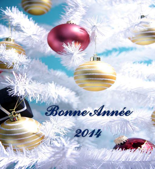 MEILLEURS -VOEUX 2014 Bonne_10