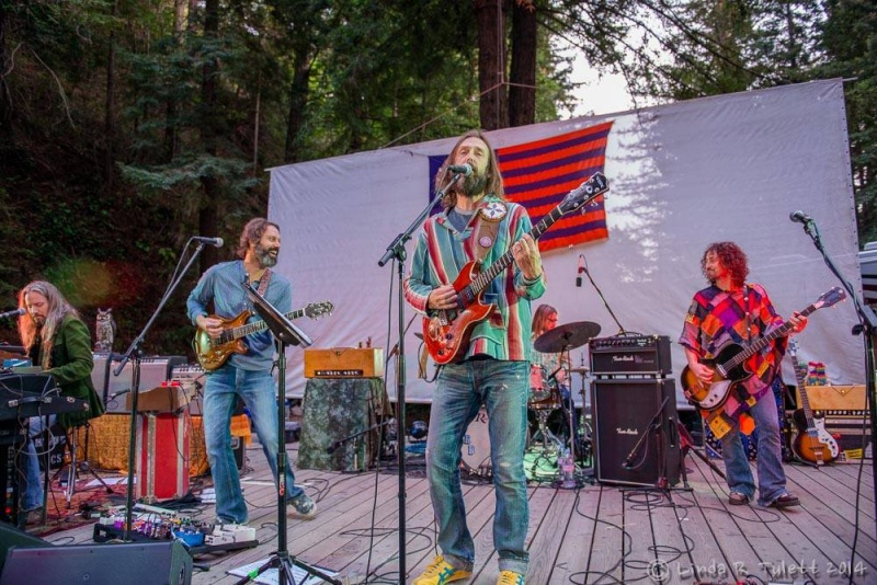 Chris Robinson Brotherhood - Photos / Arts 10258710