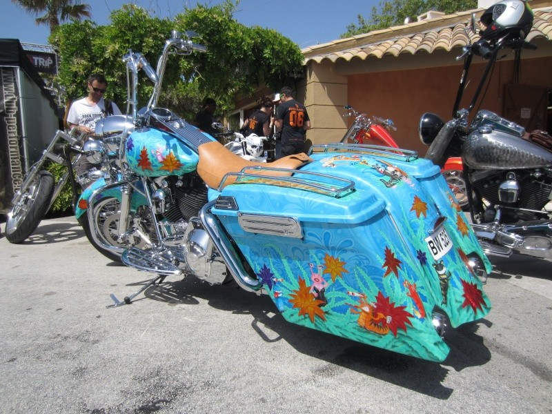 BAGGER Combien sommes nous sur Passion-Harley - Page 3 Img_2710