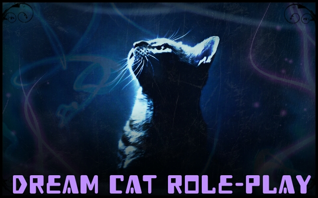 Dream Cat Role-Play