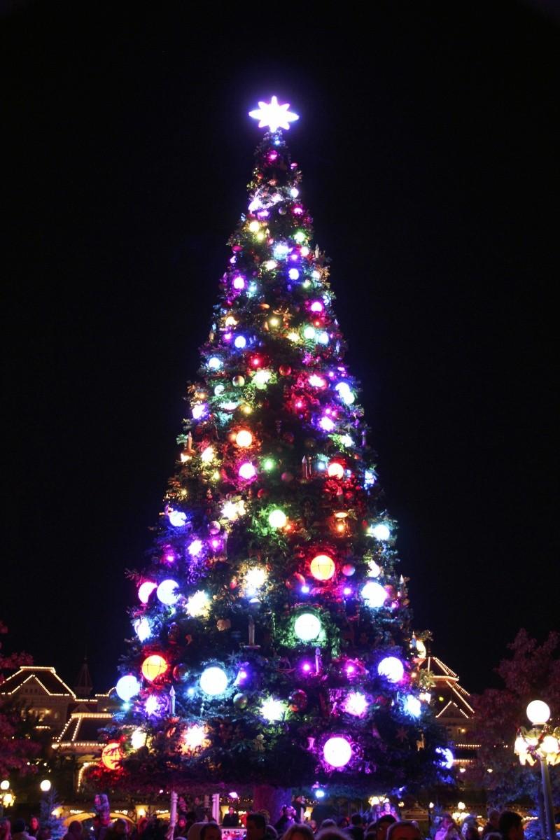 La saison de Noël idéale à Disneyland Paris  Sapin-10