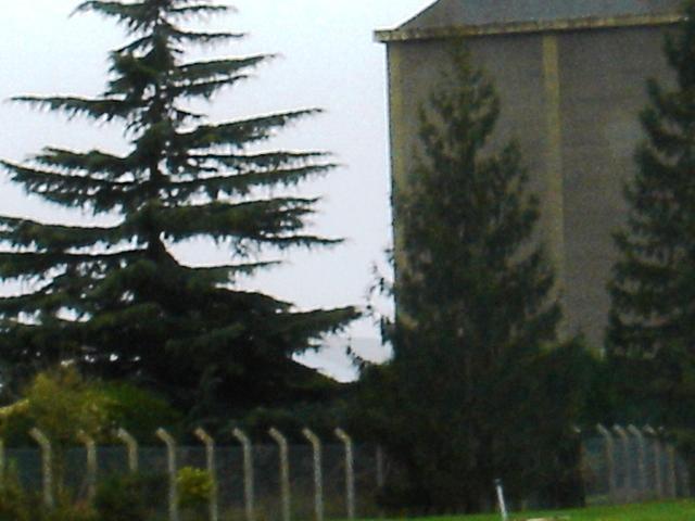 Le camp de Mignères (près de Montargis) Dsc00910