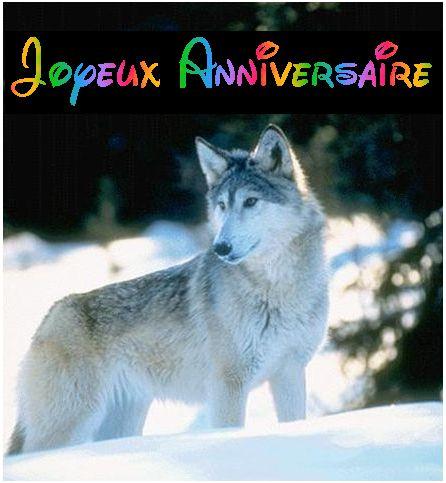 Bon anniversaire Elora - Page 2 Loup10