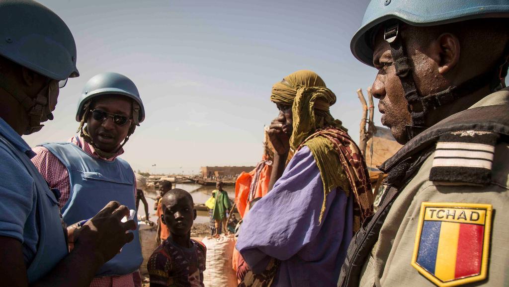 Intervention militaire au Mali - Opération Serval - Page 19 0010