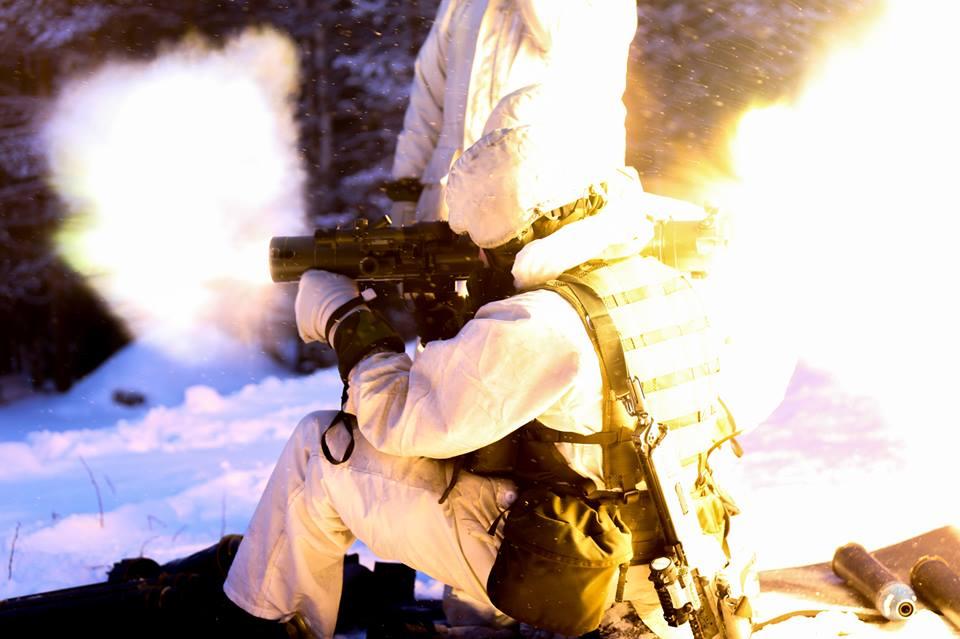 Swedish Armed Forces/Försvarsmakten - Page 13 0014