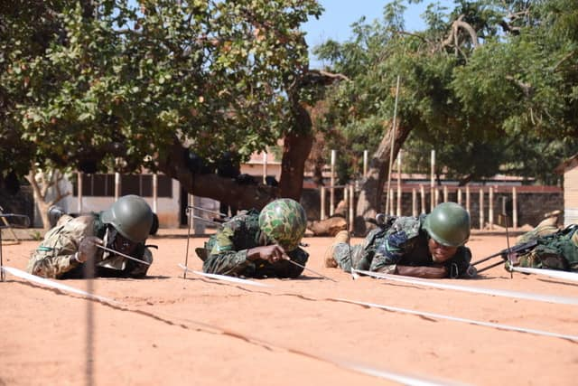 Armée Nationale Gambienne / Gambian National Army 00a10