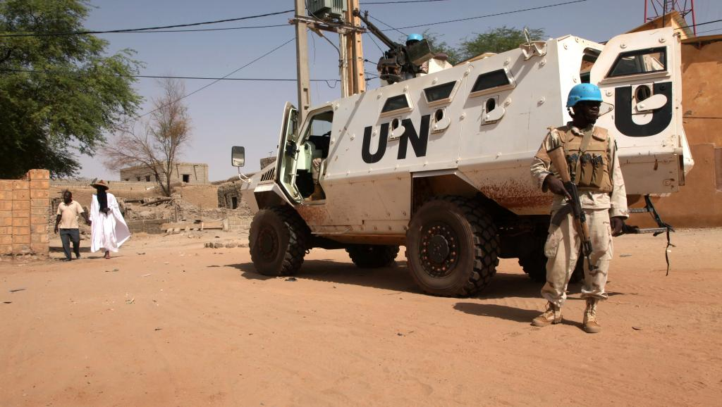 Intervention militaire au Mali - Opération Serval - Page 19 00b1911