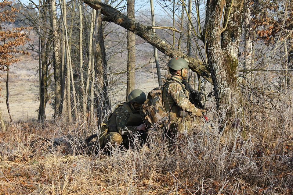 Slovenian Armed Forces / Slovenska vojska - Page 3 00b448