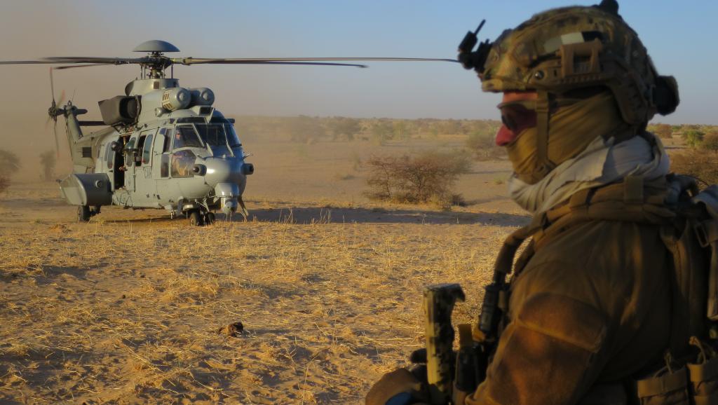 Intervention militaire au Mali - Opération Serval - Page 20 00b8e50