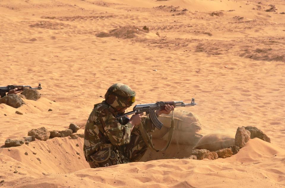 Armée Algérienne (ANP) - Tome XIV - Page 25 00b8g64