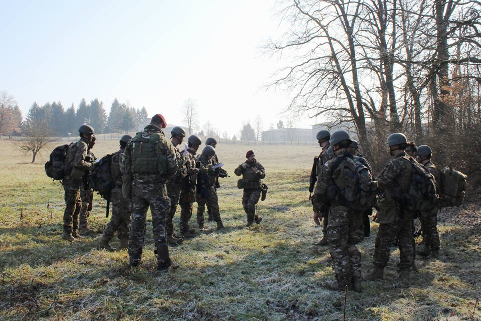 Slovenian Armed Forces / Slovenska vojska - Page 3 00b8j10