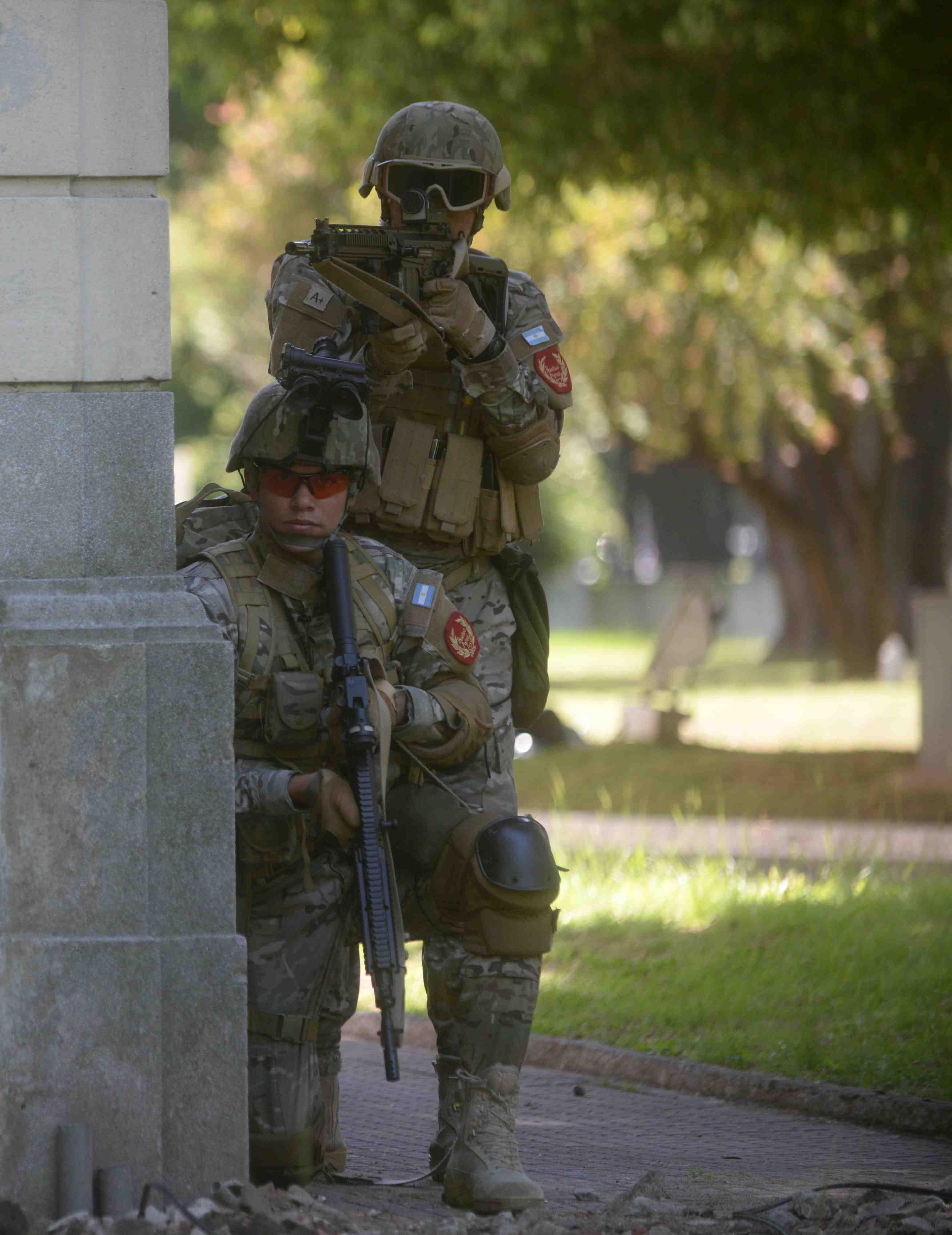 Armée argentine/Fuerzas Armadas de la Republica Argentina - Page 18 0arge10