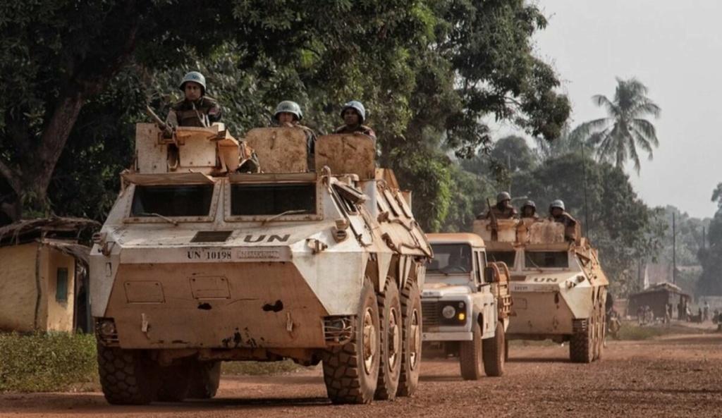 Intervention militaire en Centrafrique - Opération Sangaris - Page 5 10a98