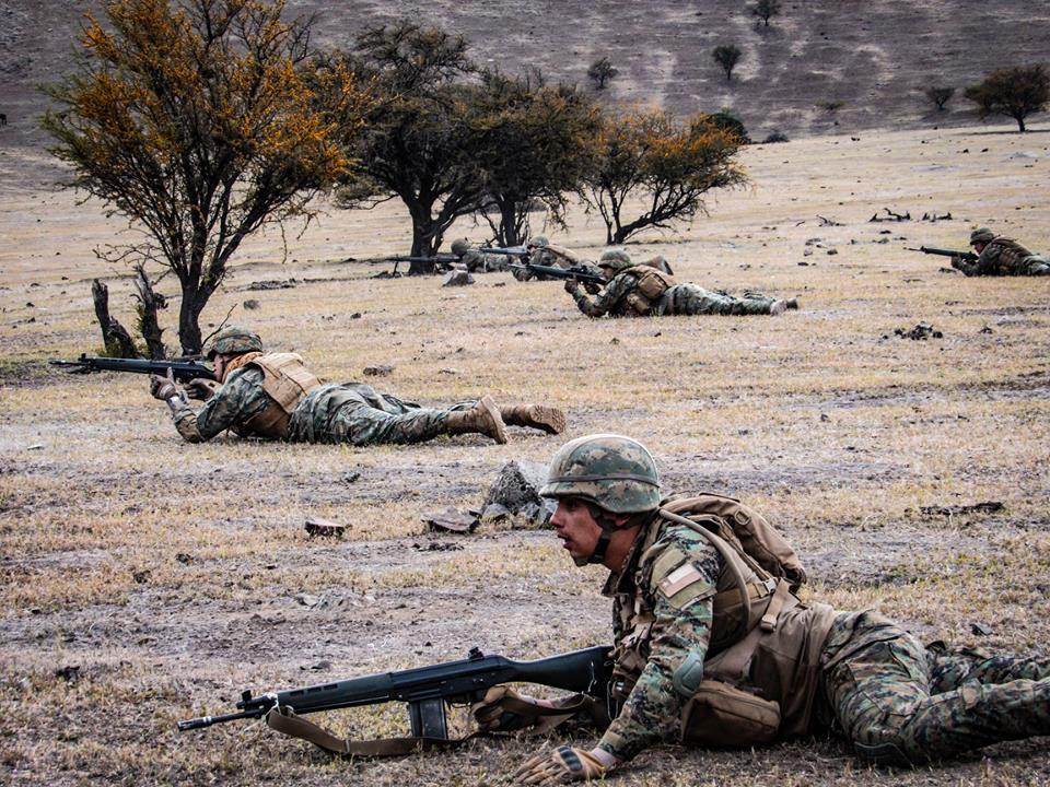 Armée Chilienne / Chile's armed forces / Fuerzas Armadas de Chile - Page 14 11a26
