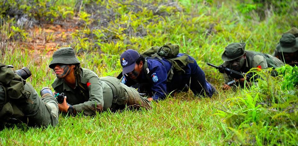 Les Forces militaires de la République des Fidji  /Republic of Fiji Military Forces (RFMF) 11c13