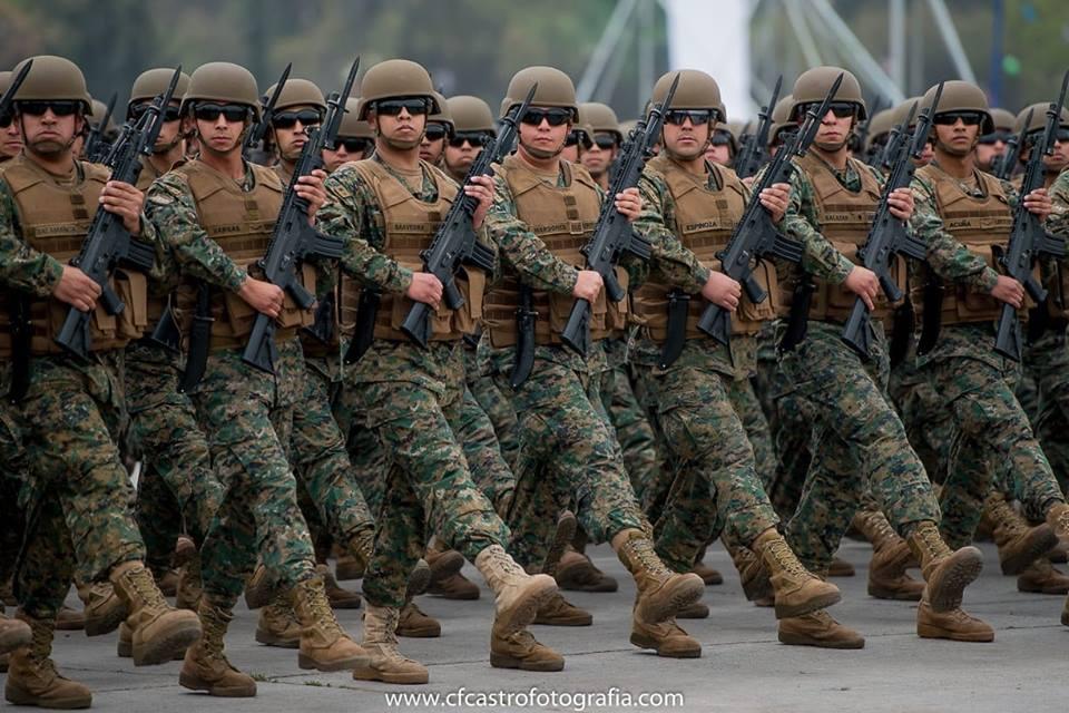 Armée Chilienne / Chile's armed forces / Fuerzas Armadas de Chile - Page 14 1210