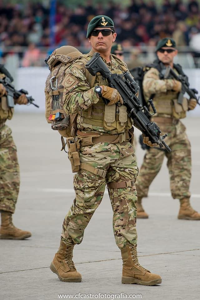 Armée Chilienne / Chile's armed forces / Fuerzas Armadas de Chile - Page 14 1211