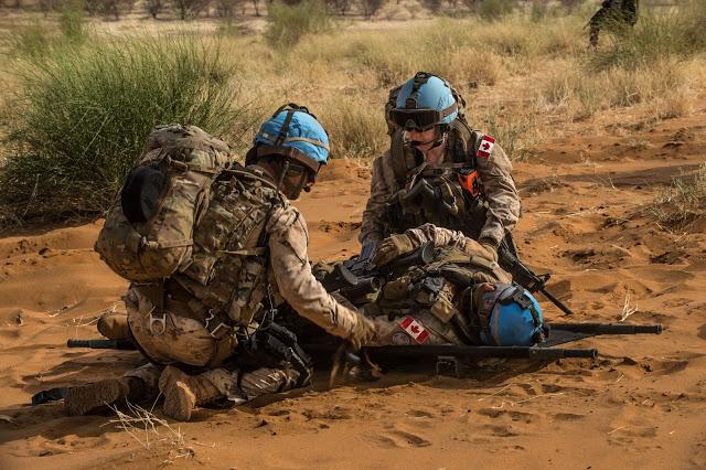Intervention militaire au Mali - Opération Serval - Page 19 13a1028