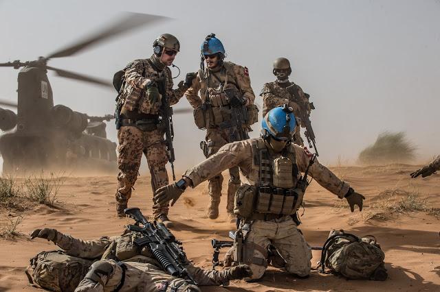 Intervention militaire au Mali - Opération Serval - Page 19 13a10c22