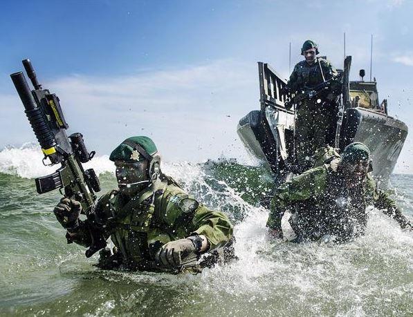 Swedish Armed Forces/Försvarsmakten - Page 15 13a27
