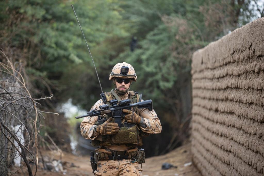 Intervention militaire au Mali - Opération Serval - Page 27 15d13