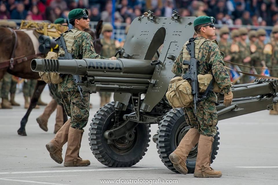 Armée Chilienne / Chile's armed forces / Fuerzas Armadas de Chile - Page 14 224