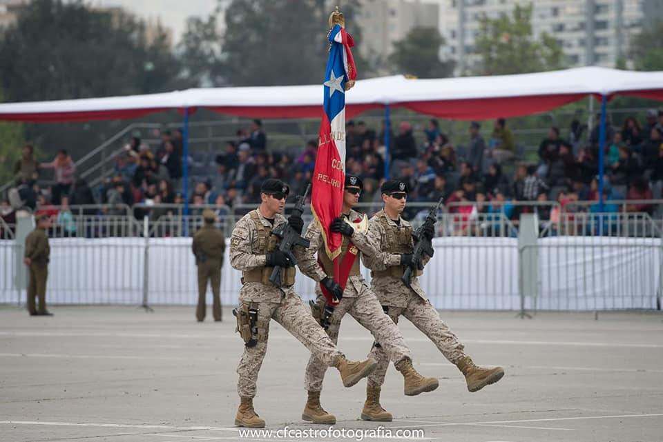 Armée Chilienne / Chile's armed forces / Fuerzas Armadas de Chile - Page 14 226