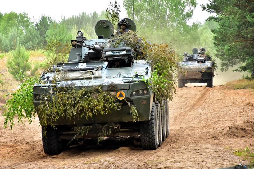 Les Forces Armées Polonaises/Polish Armed Forces - Page 24 2611