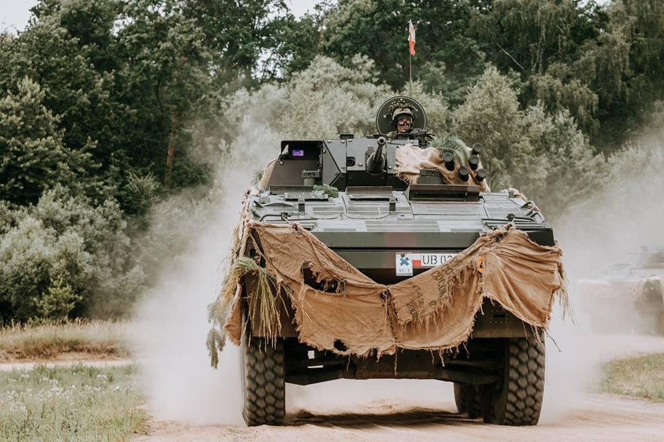 Les Forces Armées Polonaises/Polish Armed Forces - Page 24 3130