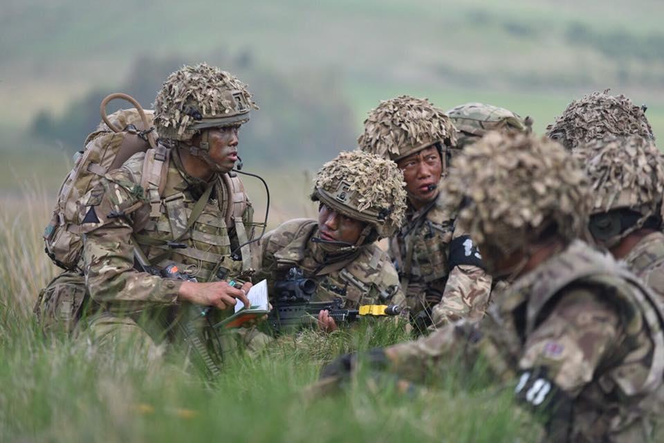 Armée Britannique/British Armed Forces - Page 10 3310
