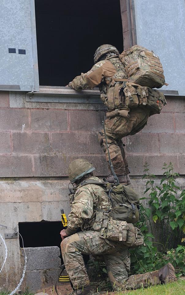Armée Britannique/British Armed Forces - Page 10 3818