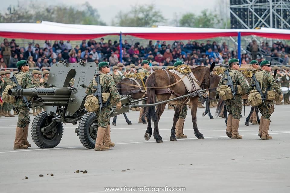 Armée Chilienne / Chile's armed forces / Fuerzas Armadas de Chile - Page 14 3a10