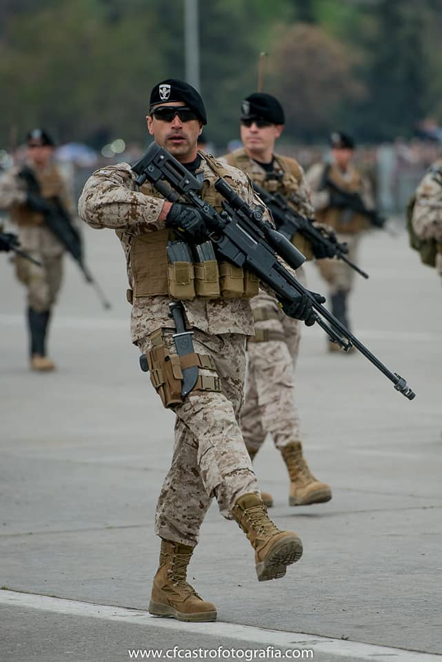 Armée Chilienne / Chile's armed forces / Fuerzas Armadas de Chile - Page 14 3a12